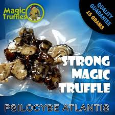 Buy strong magic truffles online