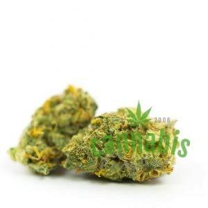 Lemon Larry OG Marijuana Strain