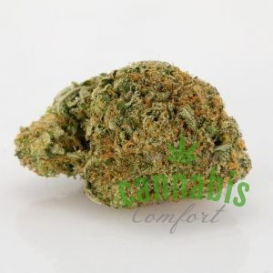 OG 18 Marijuana Strain