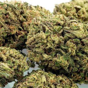 Buy Jack Herer CBD Hemp Flower
