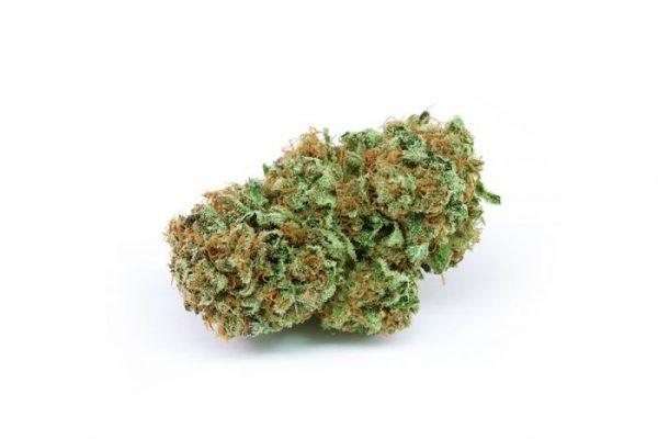 Buy Harlequin Weed Strain Online Canada