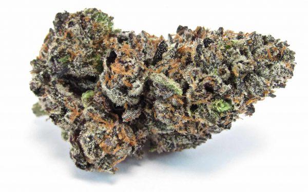 Buy gushers marijuana strain online Canada