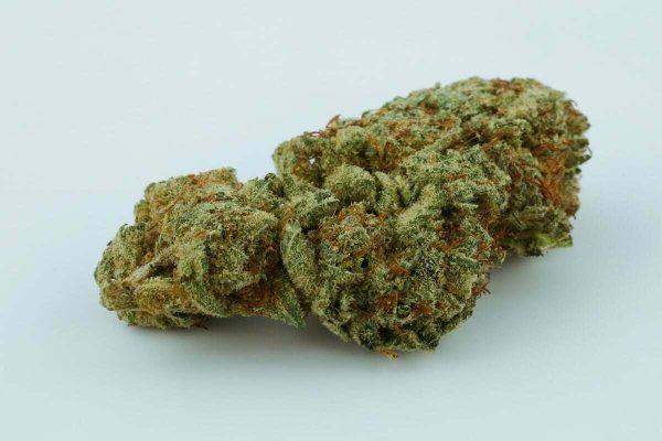 Crazy Glue Cannabis Strain Online