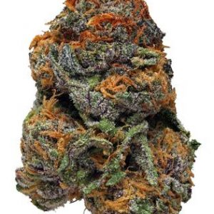 Buy Purple Voodoo Marijuana Strain