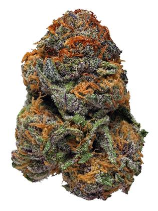 Buy Purple Voodoo Marijuana Strain