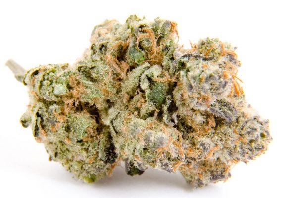 Buy Cherry Lime Haze Cannabis Strain