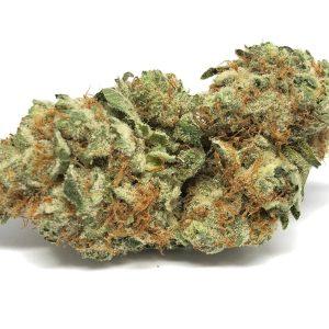 Buy Super Lemon Haze cannabis seeds online