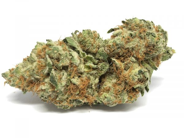 Buy Super Lemon Haze cannabis seeds online