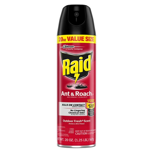 Raid bug spray in prison - Bug spray Walmart